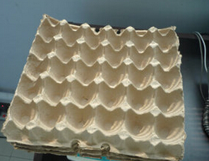 纸质蛋托3