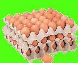 石家庄蛋托