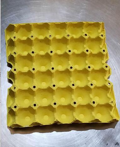 30枚纸蛋托_石家庄洁盛纸制品有限公司--蛋托,蛋托厂,鸡蛋托,河北蛋托 ...